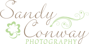 Sandy Conway Photography